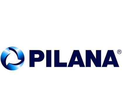 Obrázok Pilana